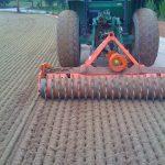 sprig planting prep tifton turf farms