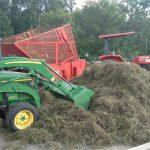 sprig planting tifton turf