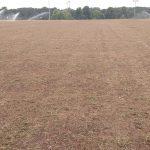 Gwinnett Parks Sprig Soccer Field Tifton Turf Farms