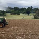 TifEagle sprig planting golf course greens