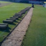 sod laid down athletic field