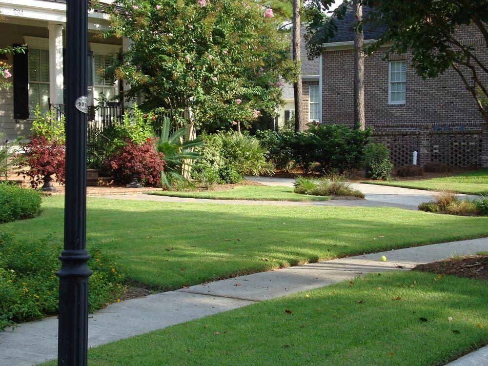 empire residential grass
